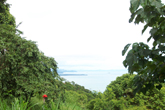 [Costa Rica Program]