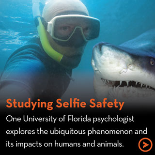 Studying Selfie Safety