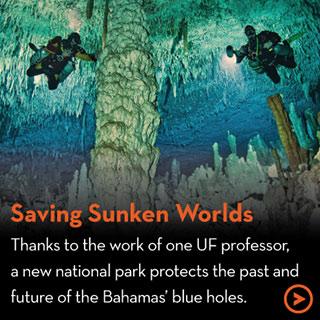 Saving Sunken Worlds