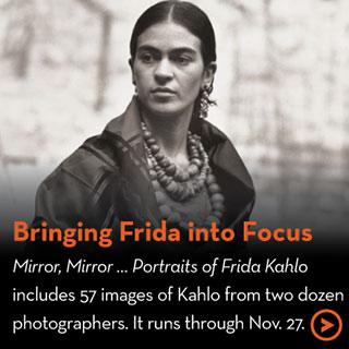 Bringing Frida into Focus